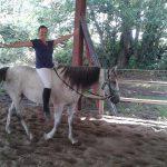 Fiona-Robertson-Riding-horse-Bare-Back