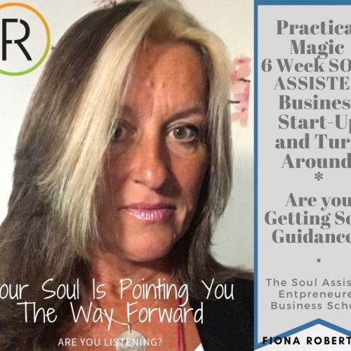 Practical-Magic-Soul-Assisted-Business-Start-Up.